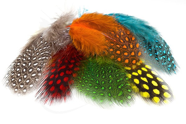Flu Red Guinea Fowl Feathers 1 Gram Pack Fly Tying Materials