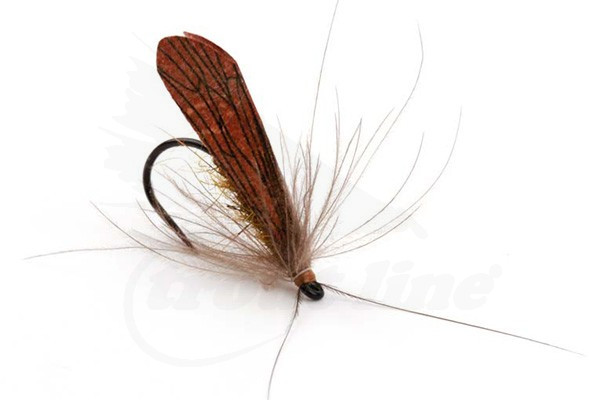 Realistic Caddis Wings Pre-Cut Fly Tying Wings Materials Trout Fly Lure 36 Pcs