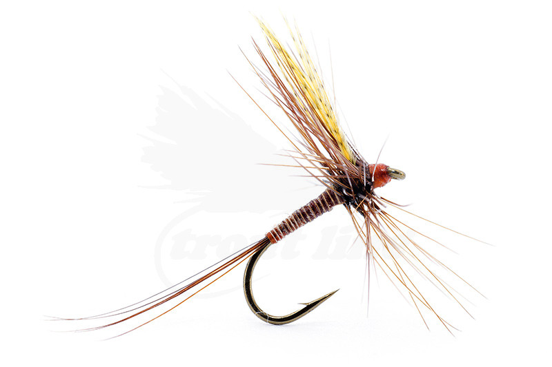 1 Red Quill Dry Fly hook size 16